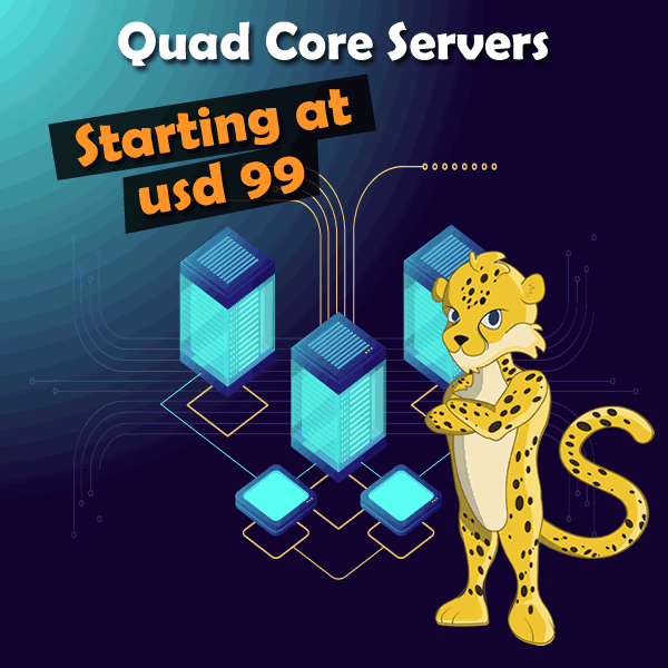 4 Core Processor Cheetah Server